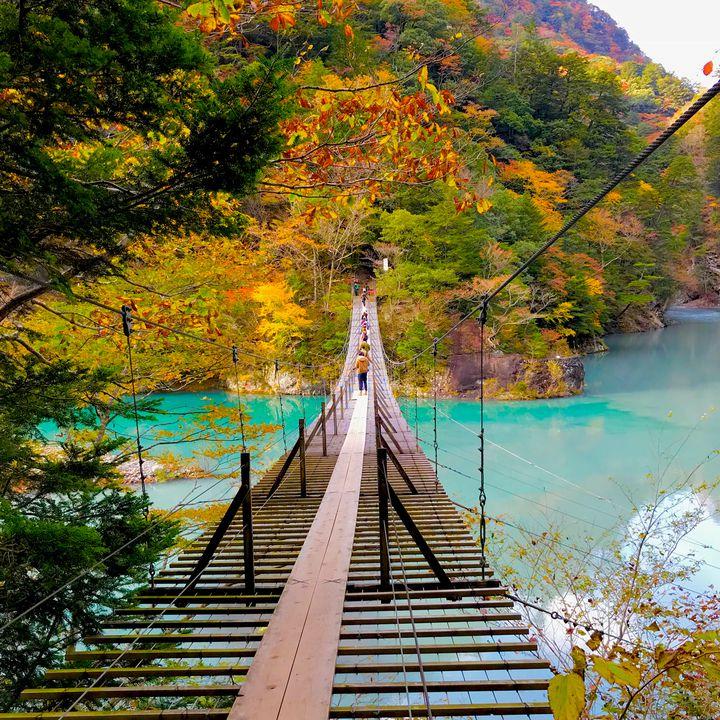 【目的別】一人でふらっと気分転換。関東近郊の日帰りおすすめ一人旅スポットまとめ