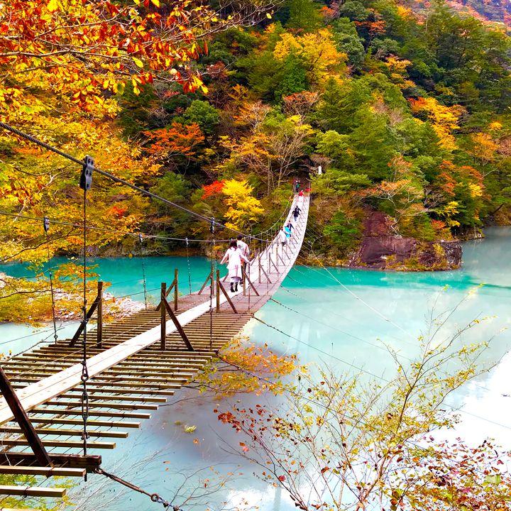 青の絶景の秋を見つけよう。日本国内にある青と紅葉の絶景スポット10選
