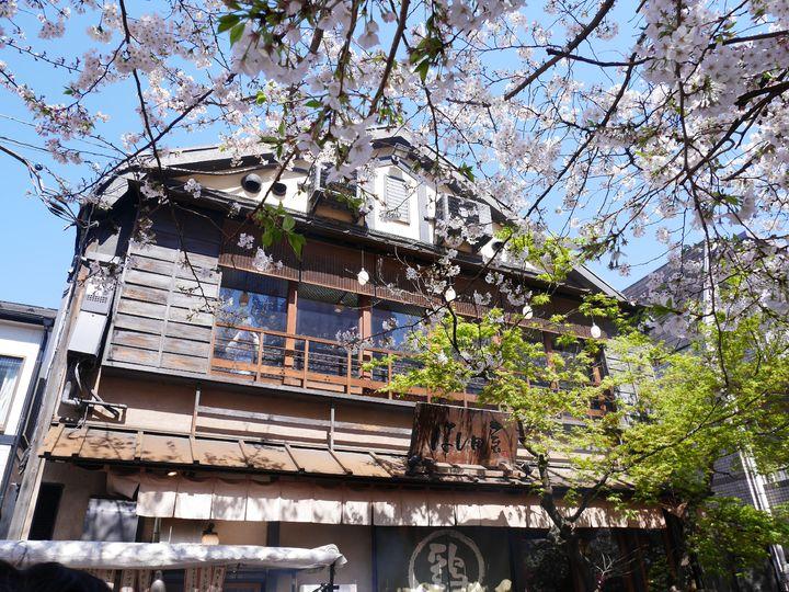 お花見も楽しめる!都内で桜が見える春の絶景カフェ&レストラン5選