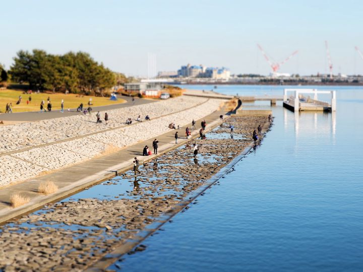 """この春は海を見に行こう!東京都内の絶景""""海が見える""""公園5選"""