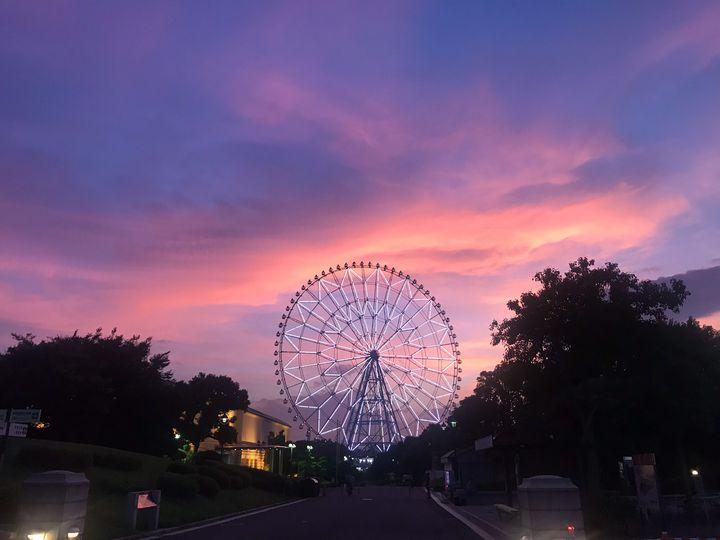 忙しい都会人におすすめ!心が落ち着く東京都内の美しい公園12選
