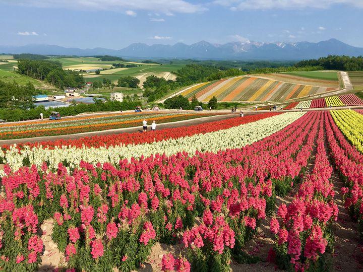 「また行こうね」と母娘で言える旅を!北海道旅行でおすすめのプラン&スポット10選