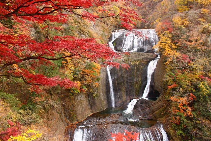 """秋めく紅葉とふたりの恋。""""秋""""の関東近郊日帰りデートで行きたい12のスポット"""