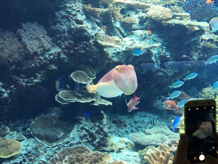 【完全保存版】初めての沖縄旅行で絶対にやるべき観光おすすめ10選