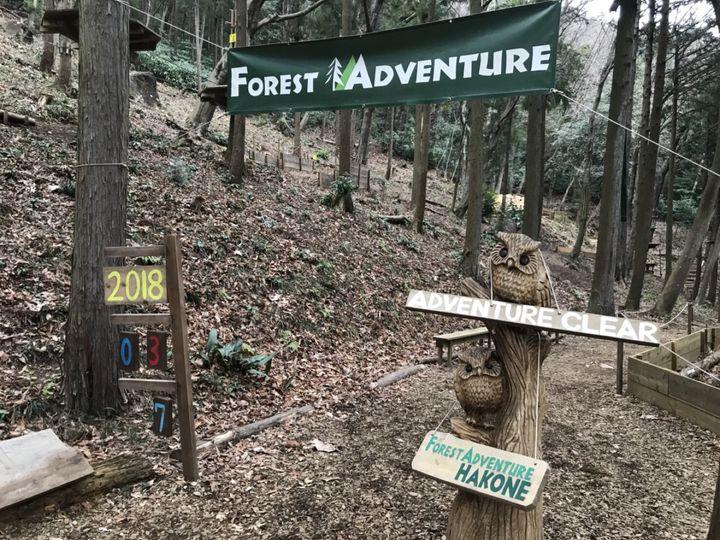 フォレストアドベンチャー箱根でしたい5つのこと!大自然を満喫しよう