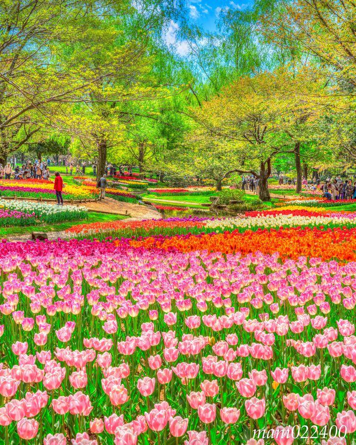 【終了】関東で始まる新生活。今週したい春を感じる7つの提案