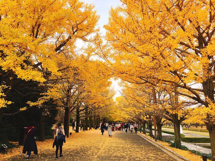 【アウトドア派カップル向け】秋デートでしたいこと&おすすめスポットまとめ