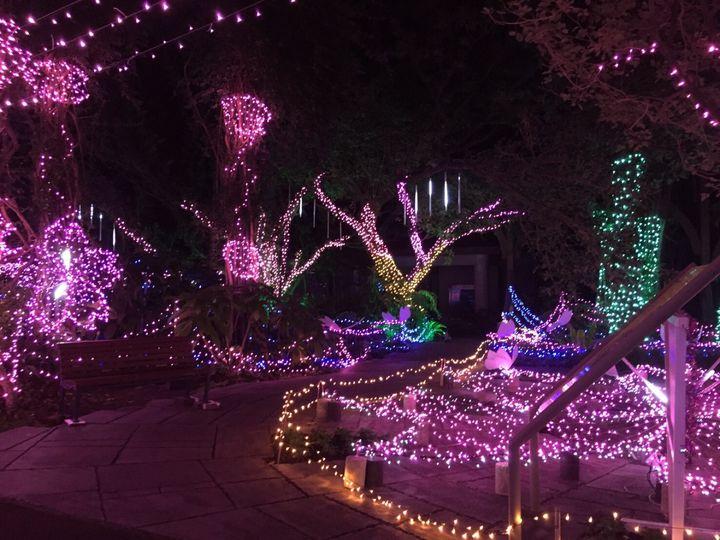 【開催中】グリム童話の世界観!フラワーパークかごしまでウィンターフェスティバル開催。
