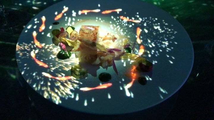 幻想的すぎる!食×アートの体験型レストラン「TREE BY NAKED」の魅力とは