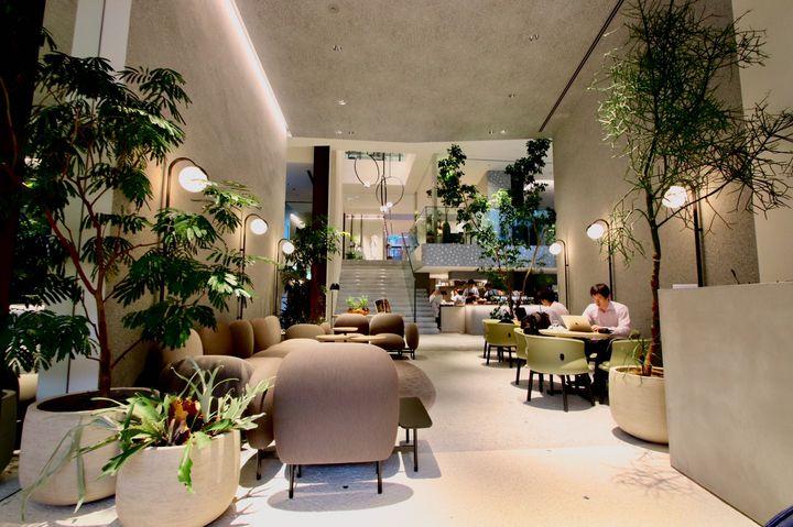 広々カフェでチルしない?都内の開放的なカフェ5選