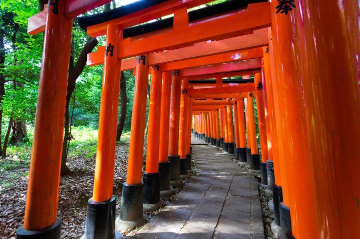 一眼片手に出かけよう。暇な日にふらっと出かけたい東京周辺の散策スポット10選