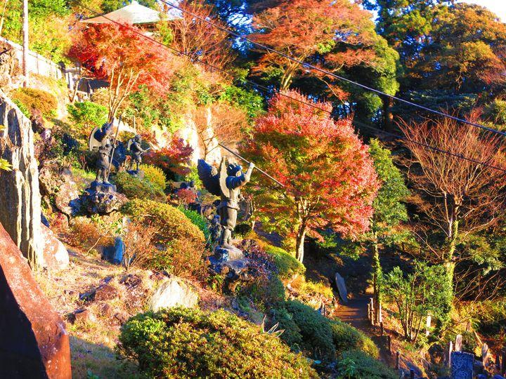 """秋を満喫したいあなたに。紅葉に色づく""""鎌倉巡り1日プラン""""をご紹介"""