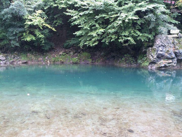 キャンプ 場 神奈川 青野原 野呂ロッジキャンプ場