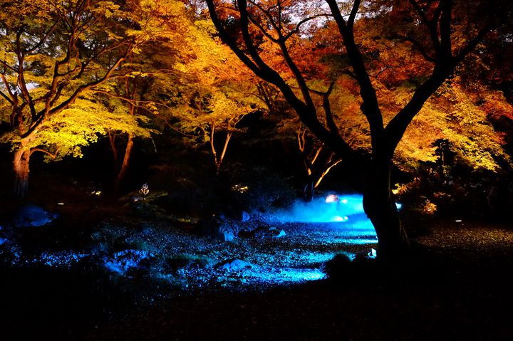 """秋の匂いは僕の理性を二度殺す。東京都内の""""紅葉と美食""""を味わう8のスポット"""