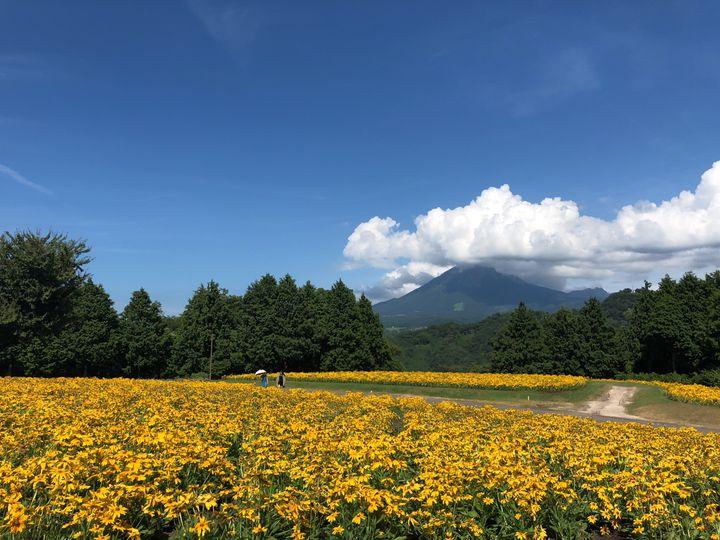 砂丘以外にも、こんなに見所が!「#鳥取ドライブ」で巡りたいスポット7選