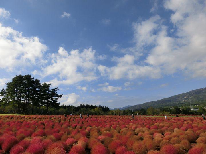一年中楽しさ満点。岐阜県「ひるがの高原」でしたい7つこと。
