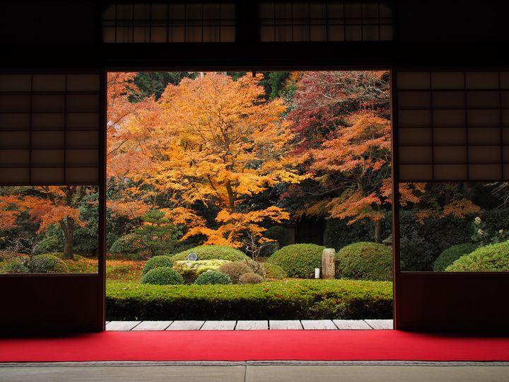 風情ある絶景さがしに、京都へいこう。京都の「絶景が見られる寺院」17選