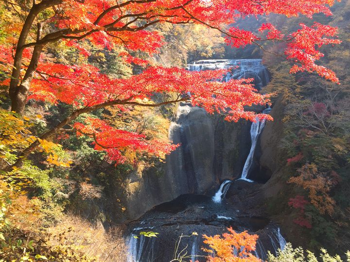 日本一周者が選ぶ!茨城で行くべき観光スポット厳選15選