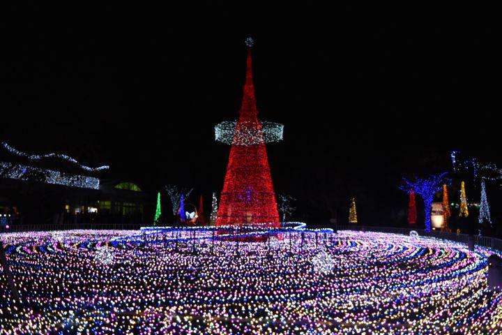 【終了】花と緑と光の融合!今年も「フローランテ宮崎」でイルミネーションが開催