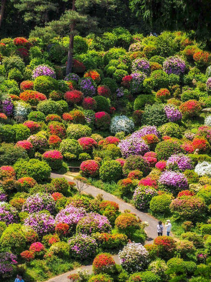 心が癒される場所はここにある。関東にある定番・穴場の美しい寺院10選