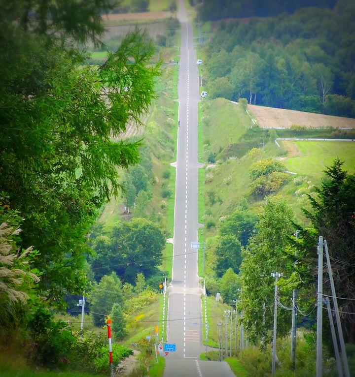 日本 一 長い 直線 道路