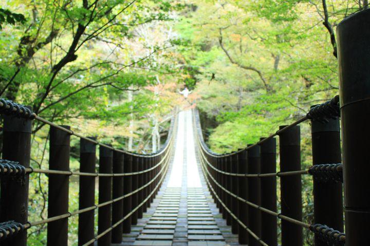 《茨城》美しき日本を再発見!茨城のフォトジェニックな絶景スポット7選