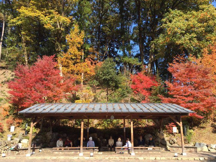 """自分を甘やかす。東京都内にある週末に行きたい""""和""""と""""洋""""のご褒美癒し宿12選"""