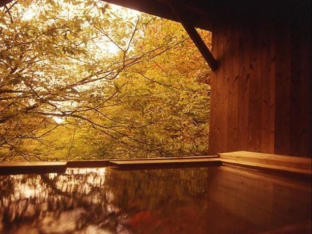 紅葉・温泉・グルメ!この秋注目の宿がある関東周辺エリアまとめ