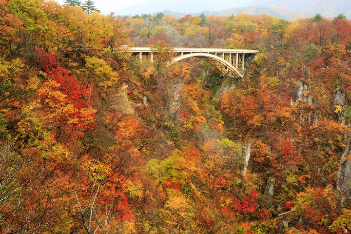 """彩り豊かな秋を五感で楽しむ。秋に行きたい""""東北地方""""のお出かけスポット12選"""