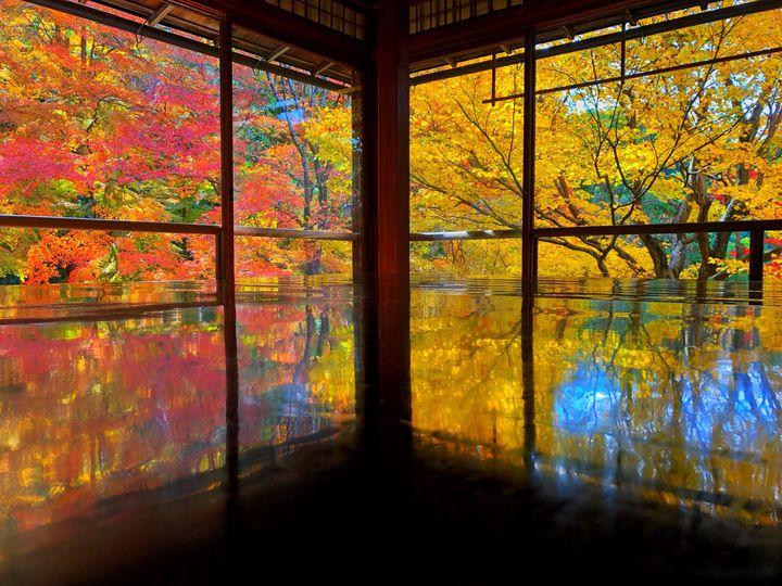 今から弾丸京都旅!一泊二日で楽しむ京都・紅葉週末旅プランはこれだ